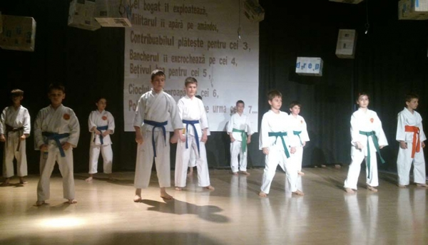 Demonstratie de karate
